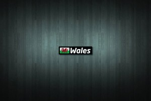Wales Flag and Country Vinyl Decal Stickers