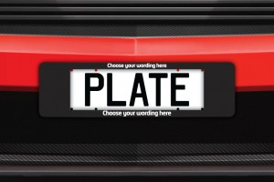Custom Winged Number Plate Surrounds