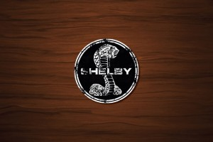 Shelby Drink Coaster