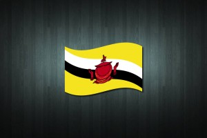 Brunei Flag Vinyl Decal Sticker