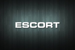 Escort Vinyl Decal Sticker