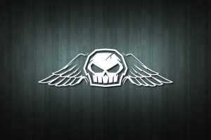 Skull with Wings Vinyl Decal Sticker
