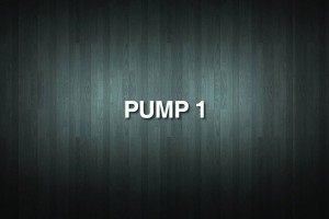 PUMP 1 Vinyl Decal Sticker