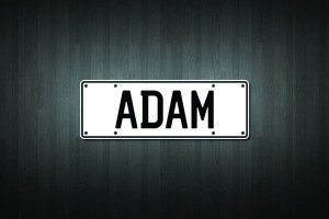 Adam Mini Licence Plate Vinyl Decal Sticker
