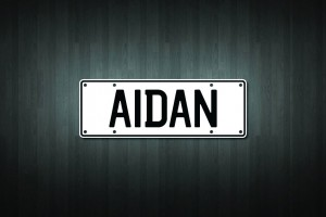 Aidan Mini Licence Plate Vinyl Decal Sticker
