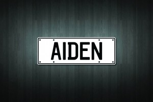 Aiden Mini Licence Plate Vinyl Decal Sticker