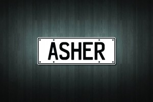 Asher Mini Licence Plate Vinyl Decal Sticker