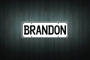 Brandon Mini Licence Plate Vinyl Decal Sticker