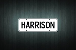 Harrison Mini Licence Plate Vinyl Decal Sticker