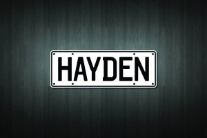Hayden Mini Licence Plate Vinyl Decal Sticker