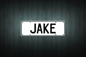 Jake Mini Licence Plate Vinyl Decal Sticker