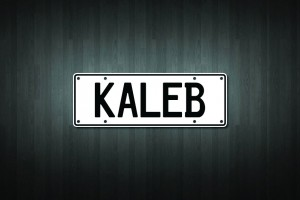 Kaleb Mini Licence Plate Vinyl Decal Sticker