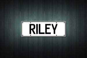 Riley Mini Licence Plate Vinyl Decal Sticker