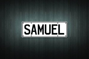 Samuel Mini Licence Plate Vinyl Decal Sticker