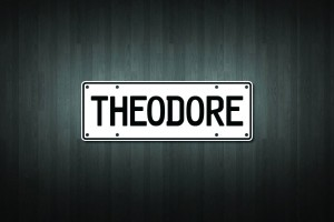 Theodore Mini Licence Plate Vinyl Decal Sticker