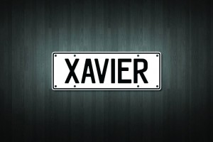 Xavier Mini Licence Plate Vinyl Decal Sticker