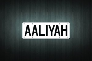 Aaliyah Mini Licence Plate Vinyl Decal Sticker