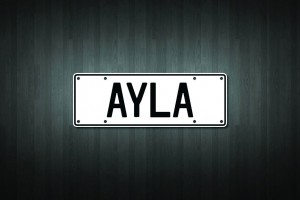 Ayla Mini Licence Plate Vinyl Decal Sticker