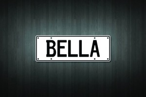 Bella Mini Licence Plate Vinyl Decal Sticker