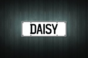 Daisy Mini Licence Plate Vinyl Decal Sticker