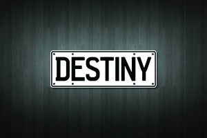 Destiny Mini Licence Plate Vinyl Decal Sticker
