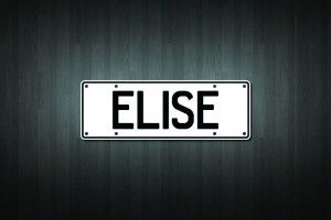 Elise Mini Licence Plate Vinyl Decal Sticker