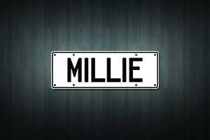 Millie Mini Licence Plate Vinyl Decal Sticker