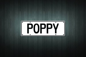 Poppy Mini Licence Plate Vinyl Decal Sticker
