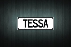 Tessa Mini Licence Plate Vinyl Decal Sticker