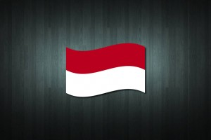 Indonesia Flag Vinyl Decal Sticker