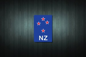 Southern Cross NZ Euro Style Number Plate Sticker