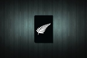 Silver Fern Euro Style Number Plate Sticker