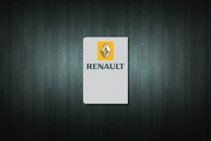 Renault Euro Style Number Plate Sticker