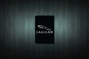Jaguar Euro Style Number Plate Sticker