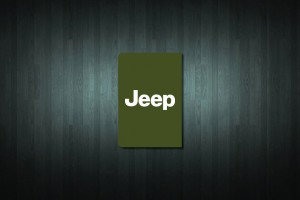 Jeep Euro Style Number Plate Sticker