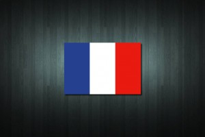 France Flag Vinyl Decal Sticker