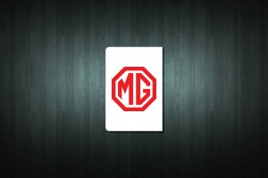 MG Euro Style Number Plate Sticker