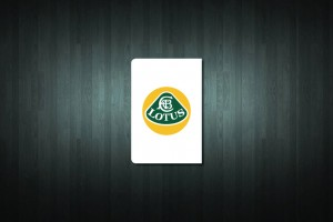 Lotus Euro Style Number Plate Sticker